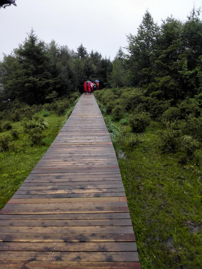 Walking on a small wooden bridge in the mountains stock photo