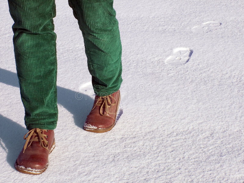 Download Walking on snow stock photo. Image of cold, snow, leaving - 480984