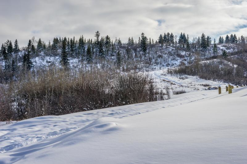 A winter hike through Edworthy Park stock photography