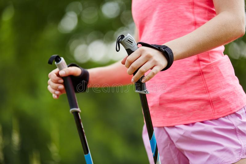 Walking sticks for nordic walking. In the nature stock photography
