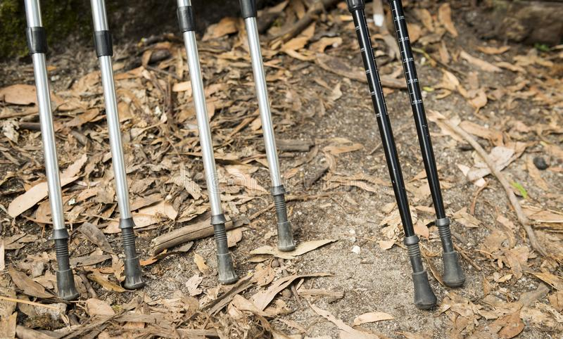Walking Sticks. Outdoor equipment for hiking royalty free stock photography