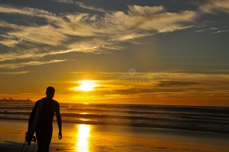 Walking surfer at sunset stock photo