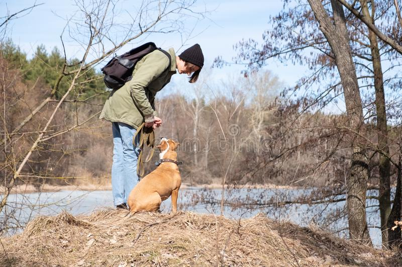 Walking and teaching dog in the wild royalty free stock image