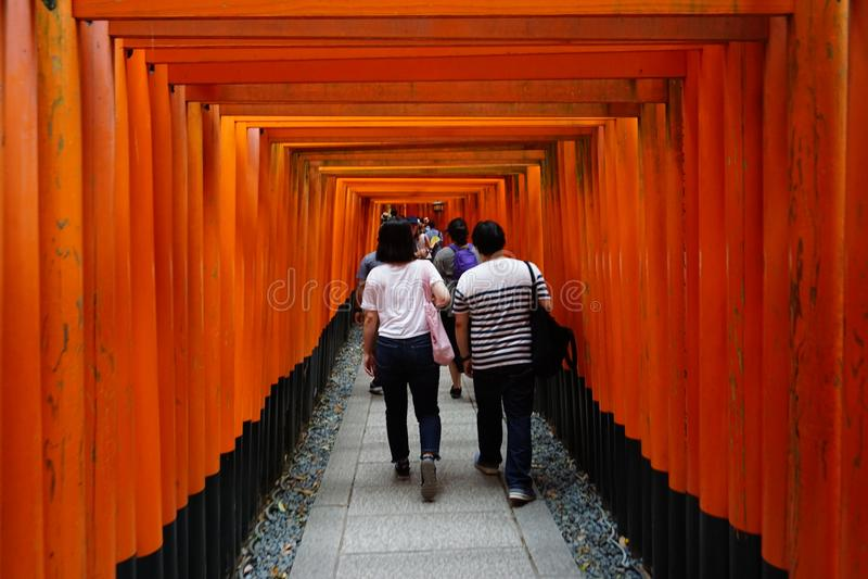Walking throgh torii stock images