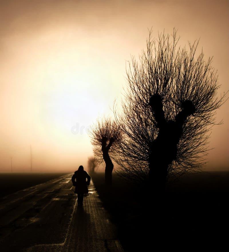 Walking towards the mist stock photos