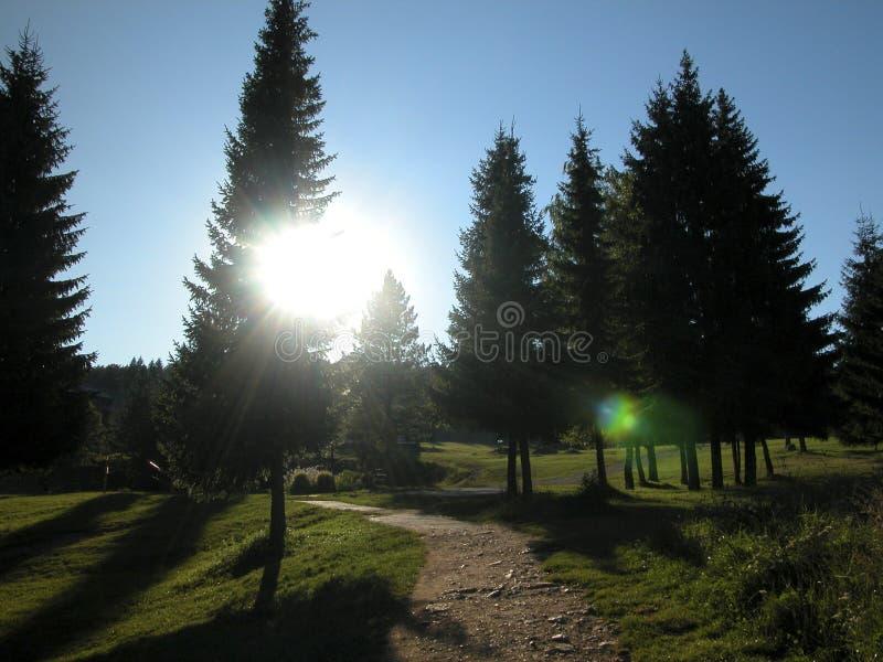 Download Walking towards sun. stock image. Image of mauntine, jogging - 759071