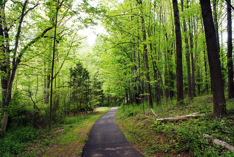 Walking trail royalty free stock photo