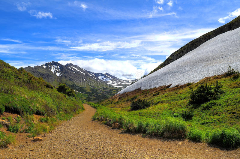 Walking trail in Alaskan mountain stock photo