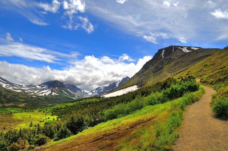 Walking trail in Alaskan mountain royalty free stock photos