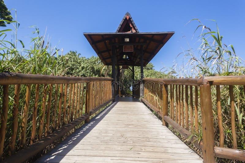 Walking Wood Bridge royalty free stock photos