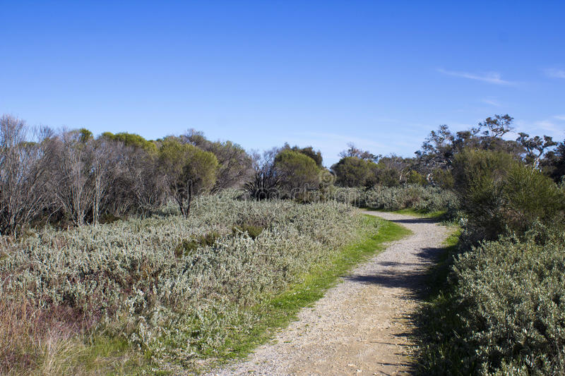 The walkpath along the Leschenault Estuary Bunbury Western Australia . The scenic view of the environment around the shallow Leschenault Estuary near Bunbury royalty free stock image