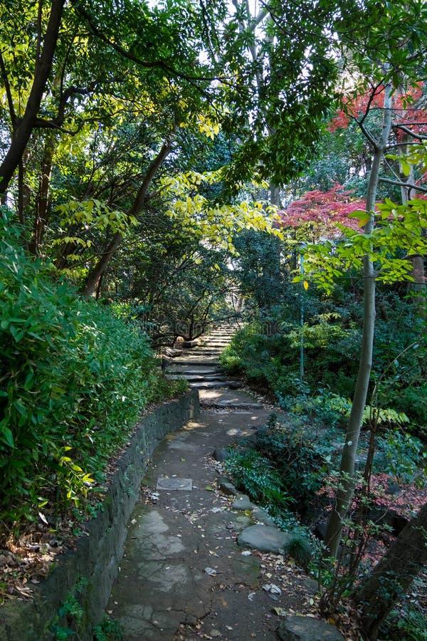 walkpath et escaliers en pierre dans le jardin image stock image du jungle route 84962319. Black Bedroom Furniture Sets. Home Design Ideas