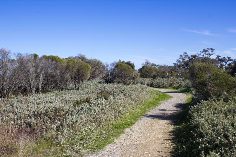 Walkpath langs het Leschenault-Estuarium Bunbury Westelijk Australië royalty-vrije stock afbeelding
