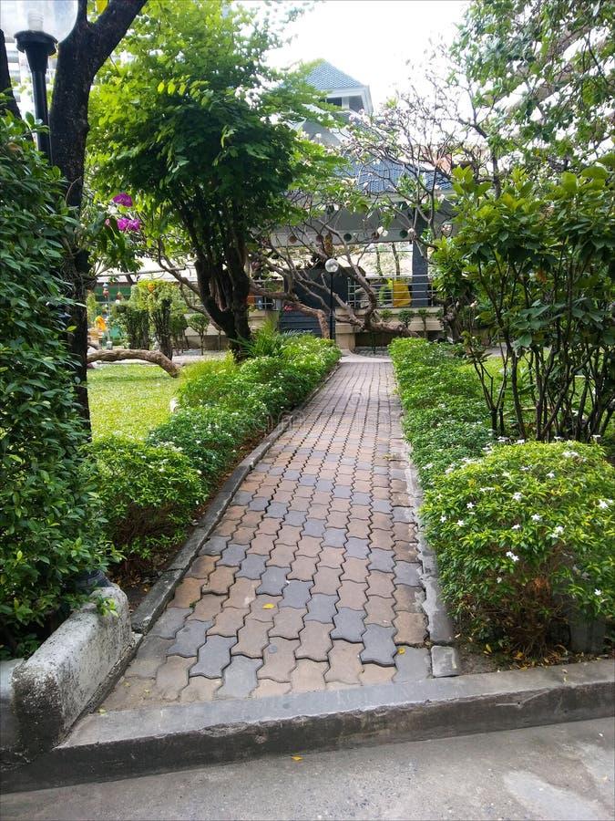 Walkpath over tuin vooraan onze woonplaats royalty-vrije stock fotografie