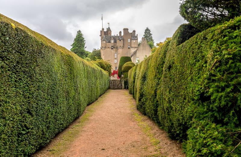 A walkpath thru the gardens to Crathes Castle with green hedges on both sides. Aberdeenshire, Scotland stock images