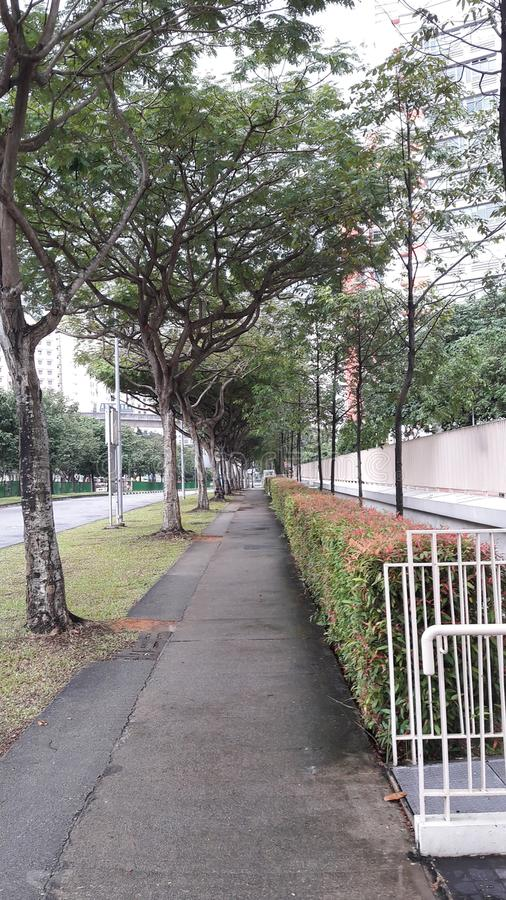 walkway royaltyfri bild