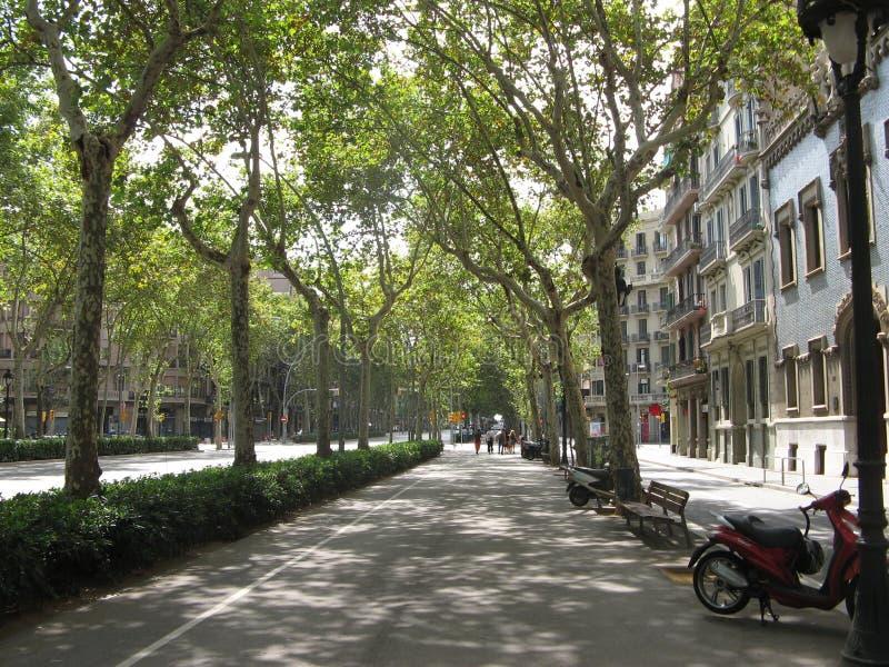 Download Walkway stock photo. Image of tour, walk, summer, trees - 1271944