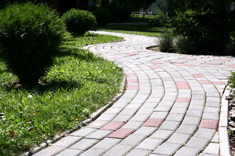 Download Walkway stock image. Image of perennial, plant, park - 15466313