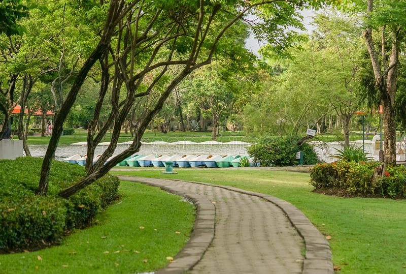 Download Walkway arkivfoto. Bild av green, clean, smutsigt, spång - 76700880