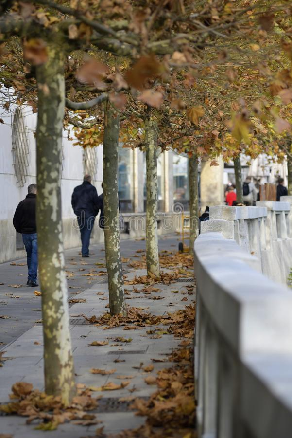 Walkway along the bank of the river Ljubljanica, Ljubljana, Slovenia royalty free stock image