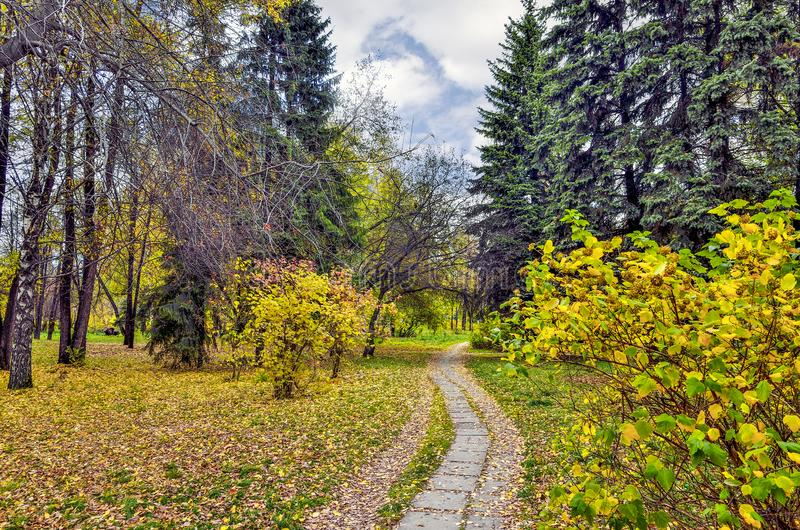 Walkway in autumn city park with multi-colored foliage of trees stock photos