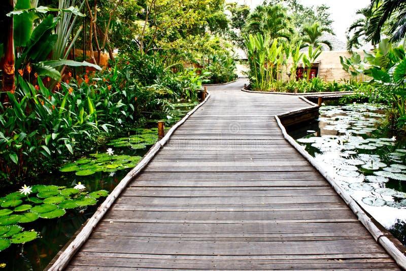 Walkway i trädgården 1 royaltyfri bild