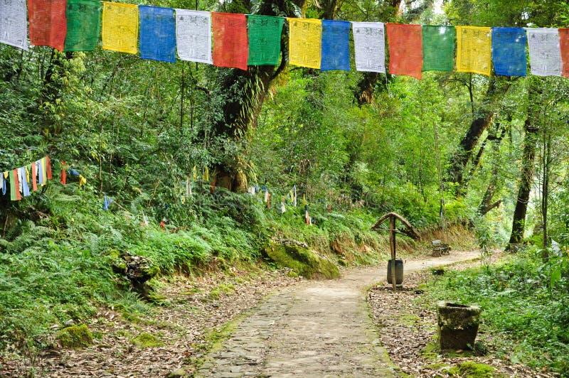Download Walkway With Mantra Flag At Khachoedpalri Lake Stock Image - Image: 26269665