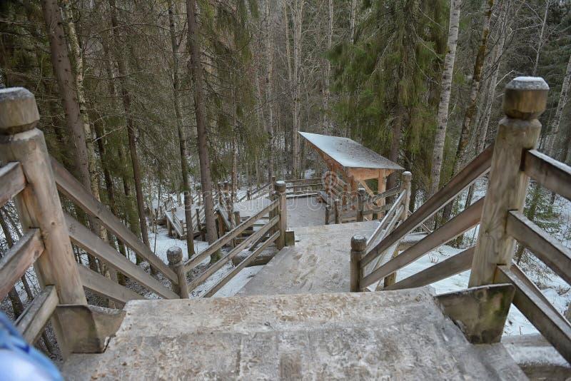 Walkway på Coldwater laken royaltyfria foton