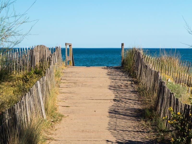 Walkway på stranden royaltyfri fotografi