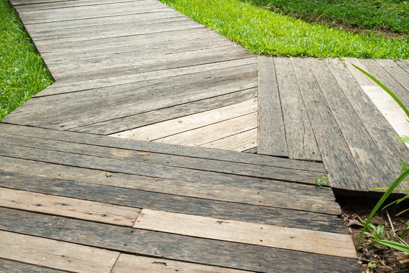 Walkway p? Coldwater laken royaltyfri foto