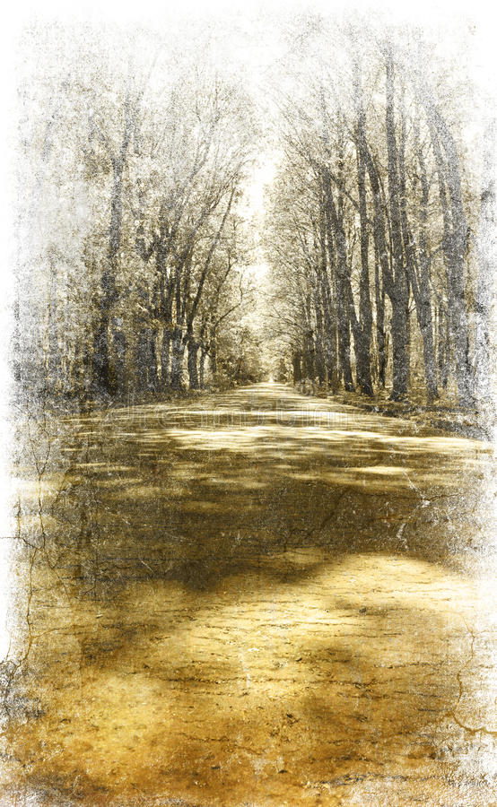 Download Walkway In The Park. Photo In Vintage Image Style. Stock Illustration - Image: 14277018