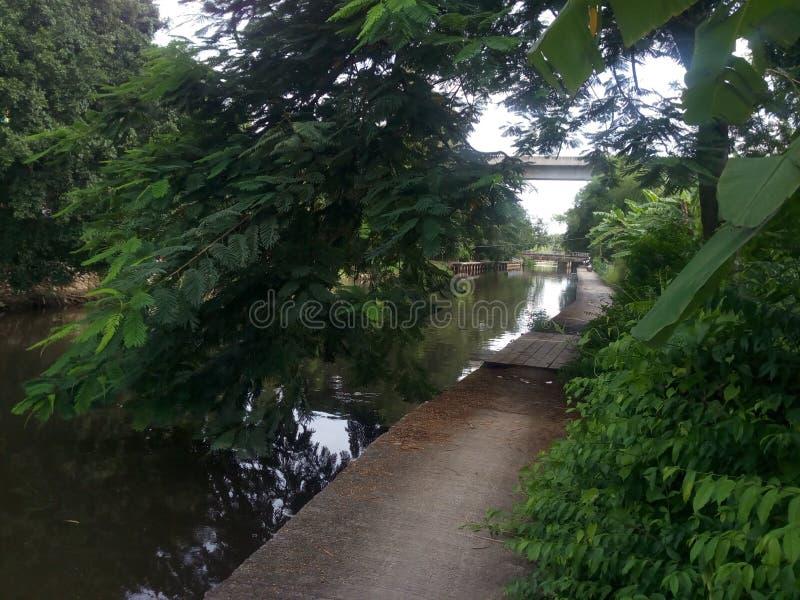 Walkway on Song ton mun canal. Branch of Prawet Burirom canal. Bangkok, Thailand stock photos