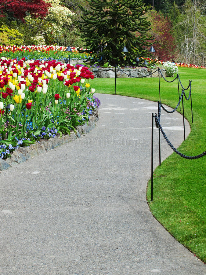 Walkway in a spring garden stock photos