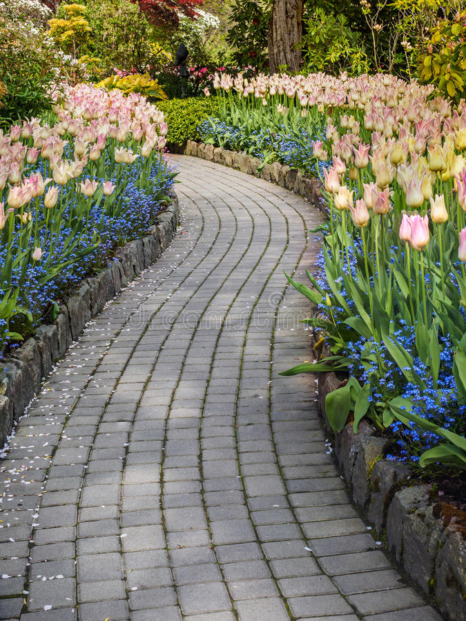 Walkway in a spring garden stock image
