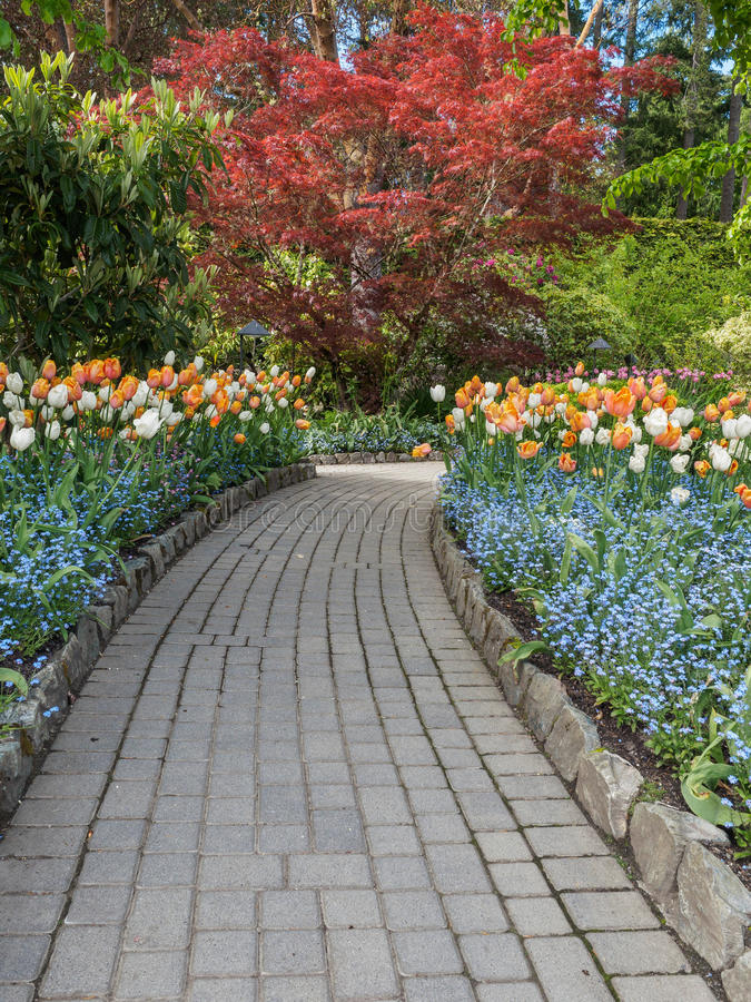 Walkway in a spring garden royalty free stock image