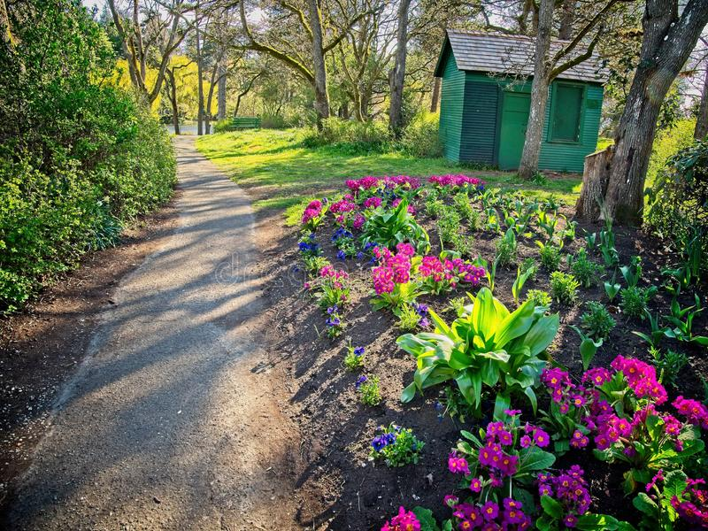Walkway in the spring park stock photos