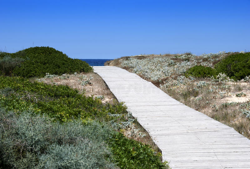 Download Walkway To The Sea Stock Images - Image: 25754244