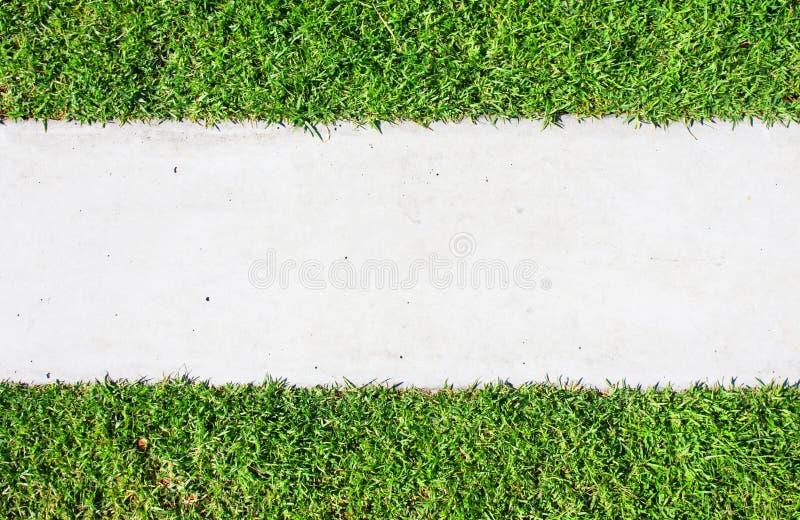 walkways för tegelstengräspark royaltyfri bild