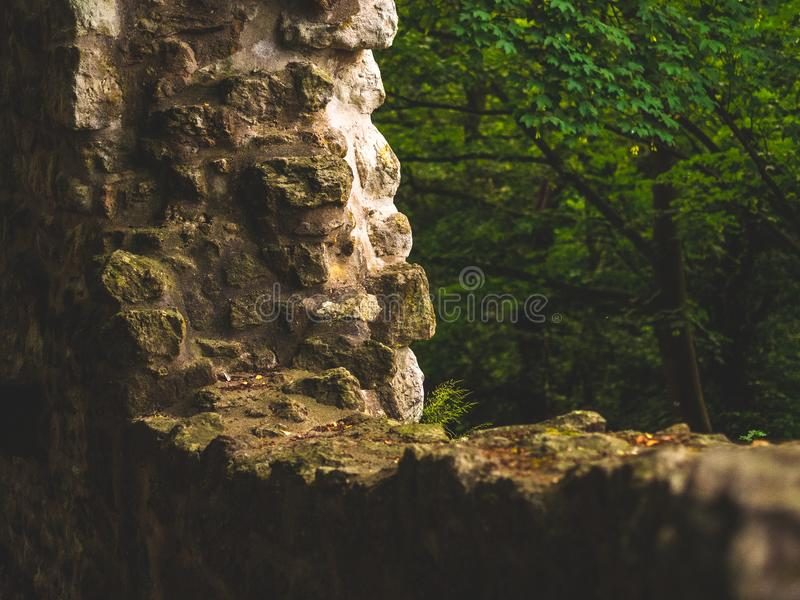 Wall of an ancient ruin in the forest in Europe. During dusk stock photos