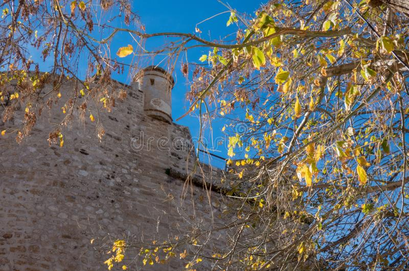 Wall of the old castle and tree in Denia, Spain. Wall of the castle in Denia, Spain stock images