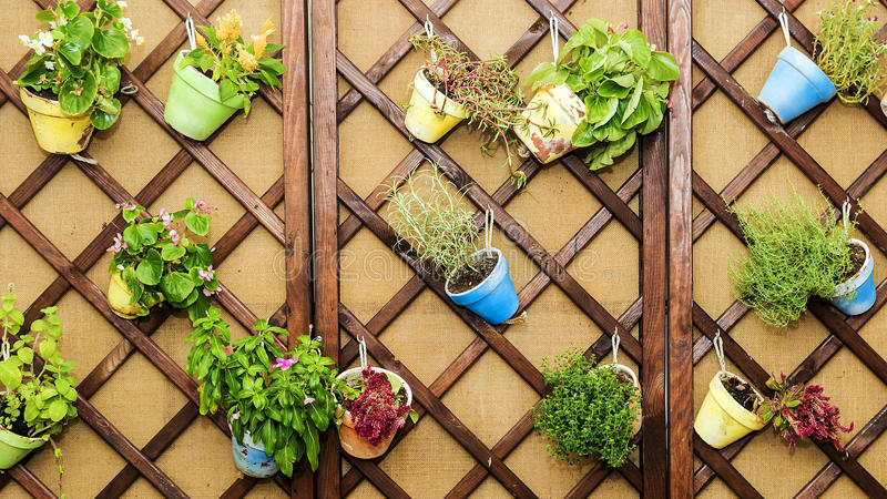 Wall decorated with pots of flowers royalty free stock image