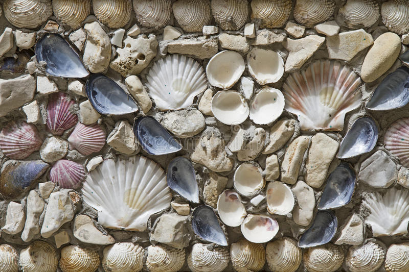 Wall decoration with shells stock images