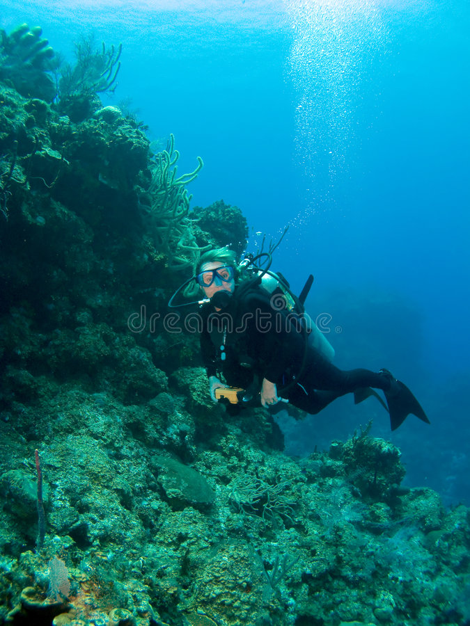 Wall Diving in the Cayman Islands. Scuba Diver Wall Diving in the Cayman Islands stock image
