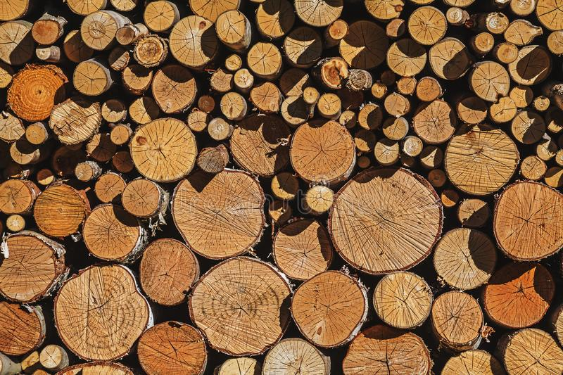 Wall of firewood of various sizes put accurately together. To dry in the sun stock image