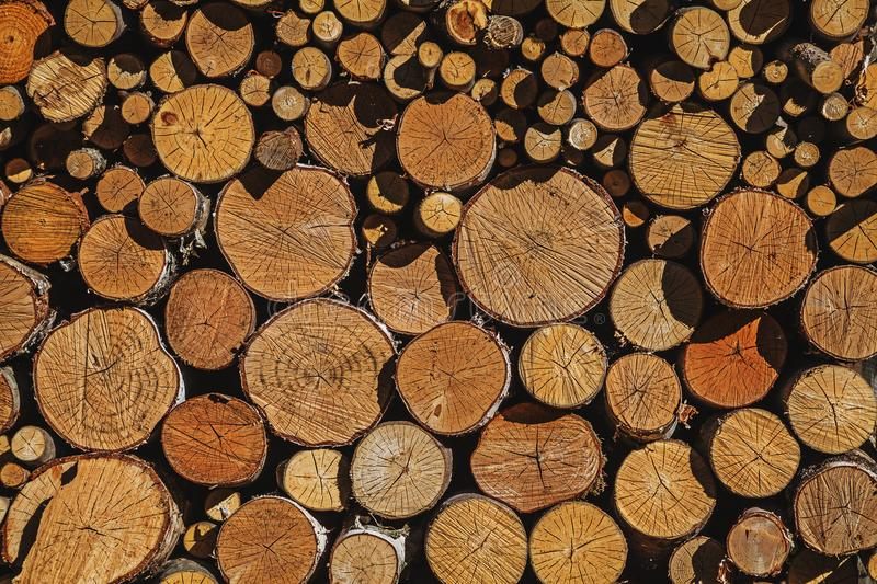 Wall of firewood of various sizes put accurately together. To dry in the sun stock images