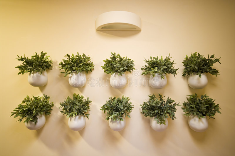 Wall flowers decoration stock image. Image of attache - 6778555