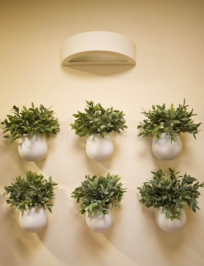 Download Wall flowers decoration stock image. Image of detail, green - 6858563