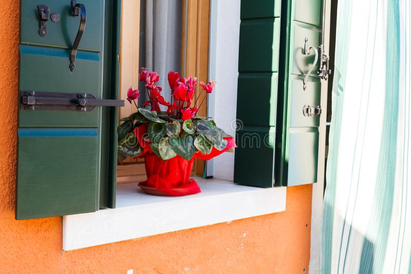 Wall with flowers on the windowsill in decorative flowerpots and other decorations royalty free stock photos