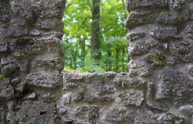 Wall and fort made of stone with window, tree with green foliage in the background. Detail of ancient fortness and fortification - wall and fort made of stone stock photo
