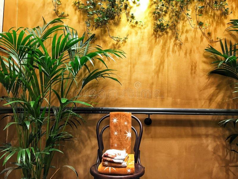Wall, home decor, living room, chair, plants, modern, home,. WALL ILLUSTRATION FOR HOME DECOR stock image